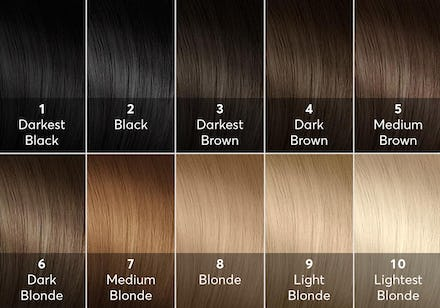 Gudu Ngiseng Blog Hair Color Levels 110 Chart Of Hair