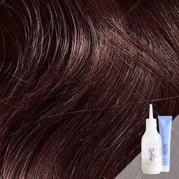 Trieste Red Deep Reddish Mahogany Brown Hair Color - Hair colour violet brown