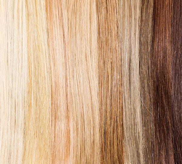 How Hair Color Works, Part One: The Structure and Behavior of Hair ...