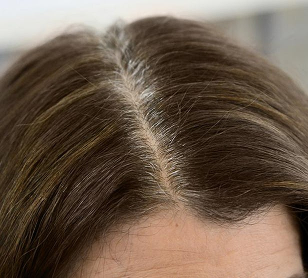How to Cover Gray Hair