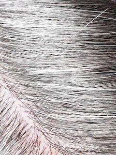 All Gray Hair