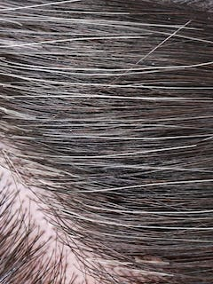 Some Gray Hair