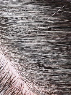 Most Gray Hair
