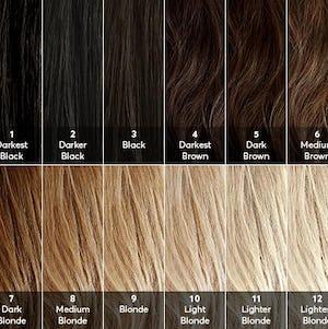 hair level chart - darkest black to lightest blonde