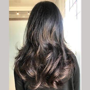Barletta Brown - True dark brown hair color for maximum gray coverage