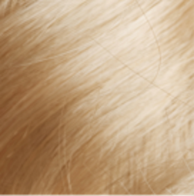 Blonde Hair Color Reviews
