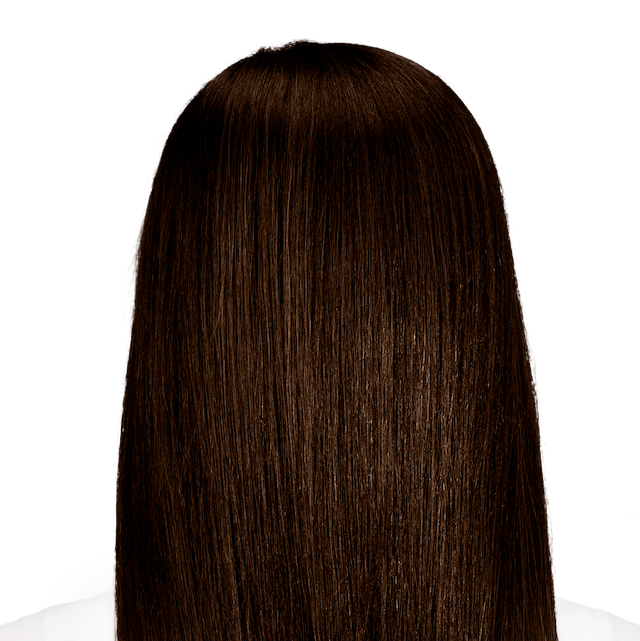 Barletta Brown True Dark Brown Hair Color For Maximum