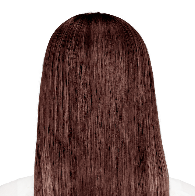 Modena Brown True Medium Brown Hair Color For Maximum Gray Coverage