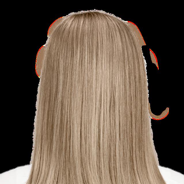 Bologna Blonde - 8NVA. Cool dark blonde with smoky undertones.