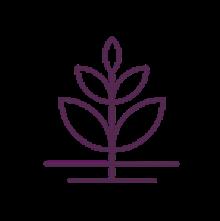 Ingredients icon